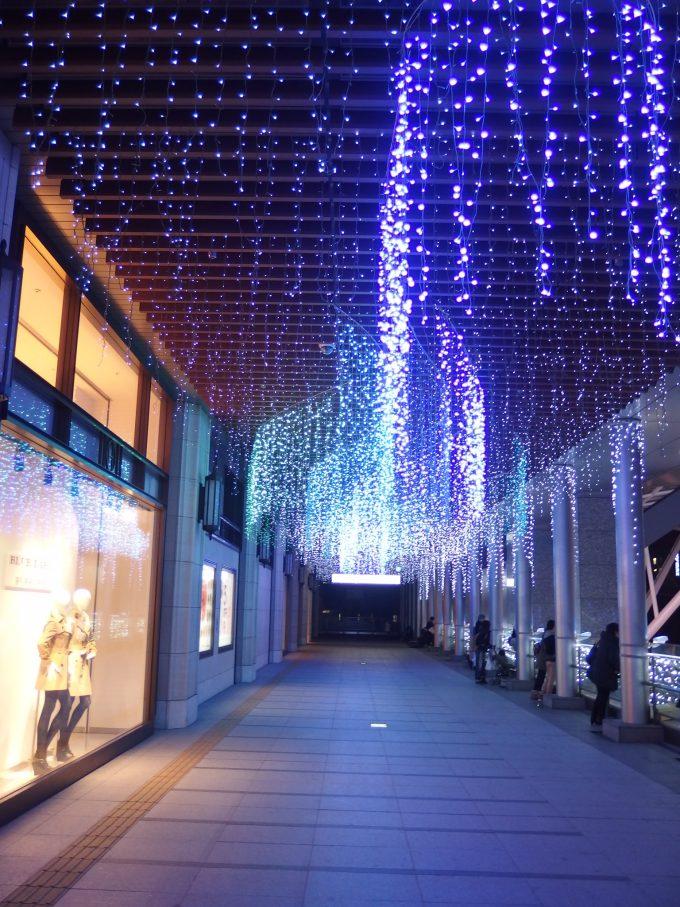 JR博多シティのイルミネーション2014年
